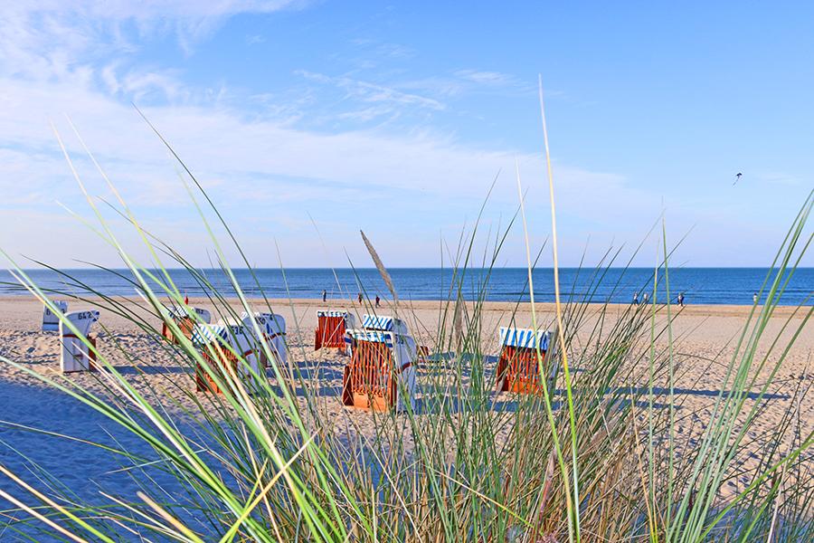Strandkörbe am Meer in Neuharlingersiel